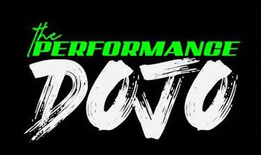 Chiropractic Apex NC The Performance Dojo Logo